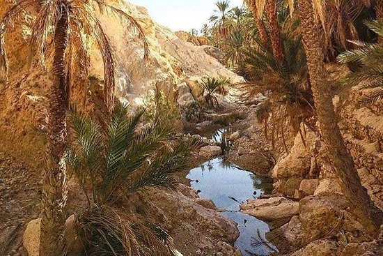 Forfait Vacances en Tunisie