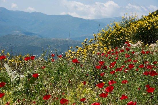 Mythical Peloponnese