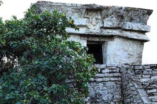 Tour privato di Tulum e Cenote di