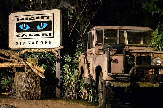 Safari Noturno com Trânsito...