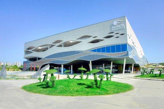 Pacote Completo Antalya Aquarium