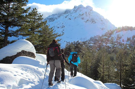 Snowshoe full-day guided tour in...