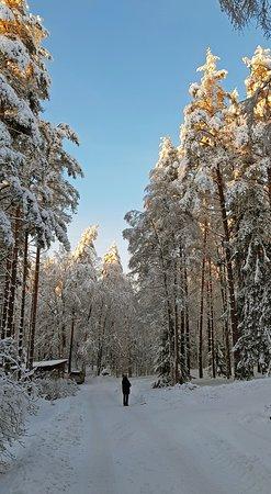 снежные картинки