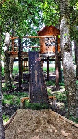 Juegos en el Bosque para niños