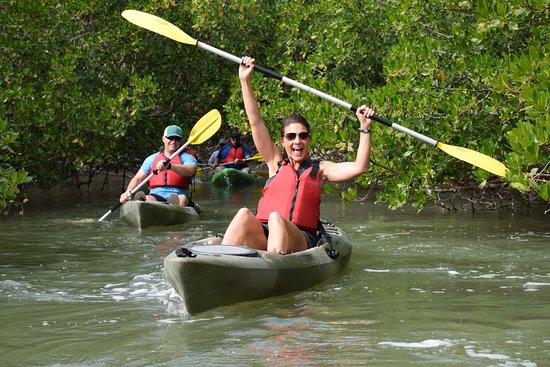 Up a Creek Kayak Tours