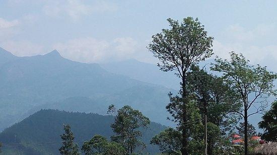 Knuckel in Sri lanka