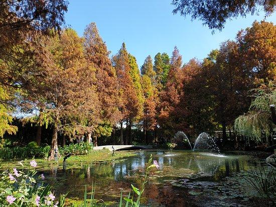 Tenway Garden