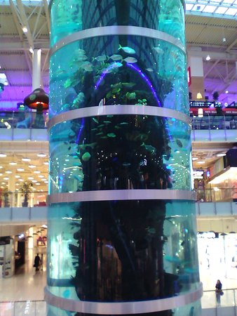 Торговый центр Авиапарк, Москва  лучшие советы перед посещением 93b30285dac