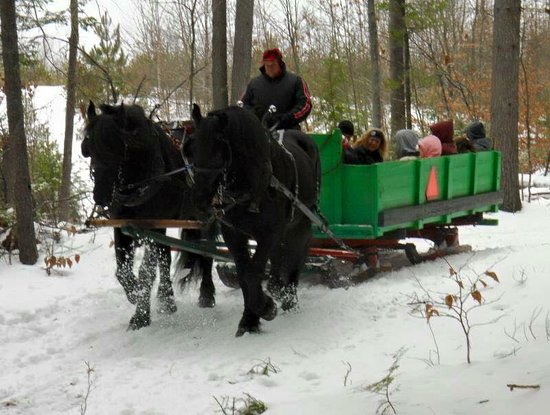 Jaffrey, NH: HORSE DRAWN SLEIGH RIDES IN THE WINTER AND WITH HAY RIDES DURNING THE REMAINDER OF THE YEAR.