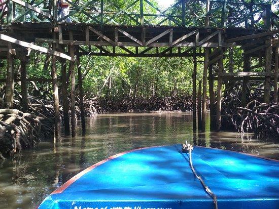 Baratang Island Photo