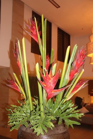 The Magani Hotel and Spa: fleurs