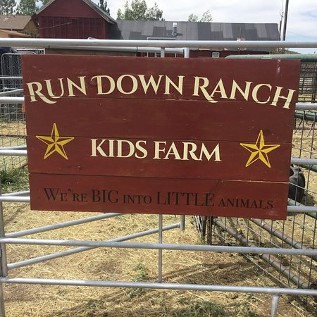 Kamas, UT: RundDown Ranch Kids Farm We are BIG into LITTLE animals!