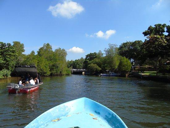 Sanka Tours: Bentota river safari