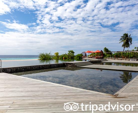 The Pool at the Amari Havodda Maldives