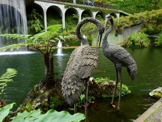 Monte Palace Madeira: Fågeldekorationer