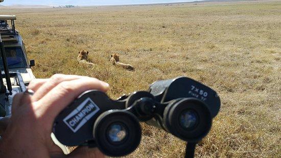 탄자니아 사진