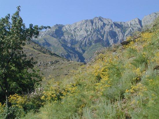 Jizzakh, Usbekistan: Nuratau Mountains