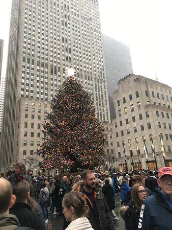 Tree at Rockefeller Center 2018