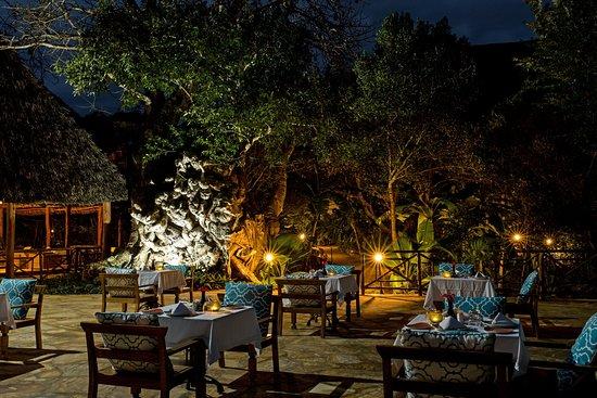 Tikitam Palms Boutique Hotel: Jua restaurant under the giant baobab