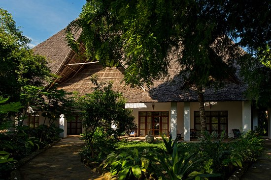 Tikitam Palms Boutique Hotel: Tikitam Palms inside the authentic tropical garden, with all its fragrances, singing birds & shadowed by spectacular Tamarinde trees . They supposed to bring balance to our energy ...