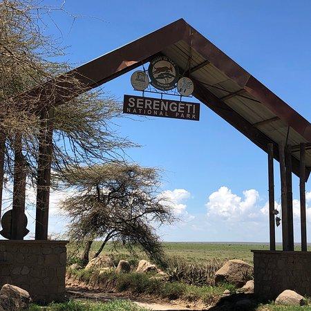 Ảnh về Vườn quốc gia Serengeti