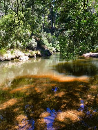 Blackwood Forest, Austrália: Water hole for swimming/wading.