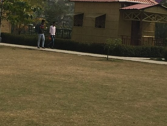 Lawn which film makers are prefering now.
