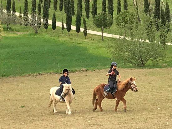 Alanno, อิตาลี: La Masseria Azienda Agrituristica