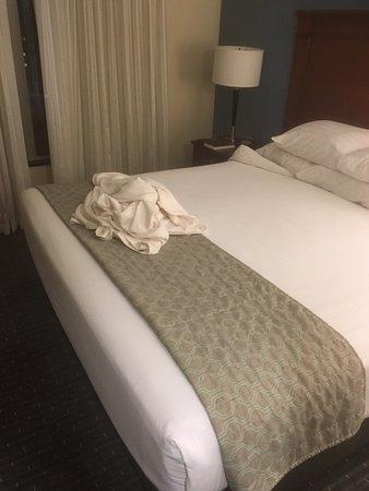 Brentwood, MO: This was the best 'bed service' at Drury, other days it was worse. They seem to hate their customers