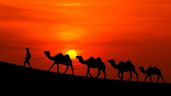 marrakech top excursions