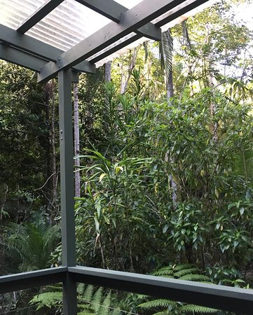 Upper Crystal Creek, Australia: Balcony view
