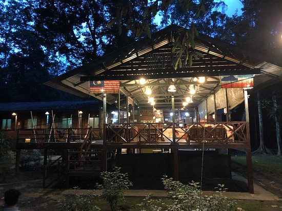 Sukau, Malaysia: This is the lounge and eating area