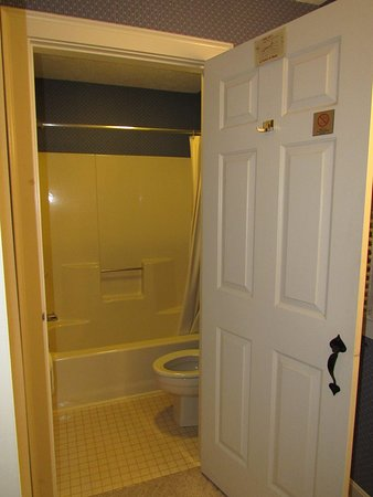 Separate tub/shower combo and toilet.