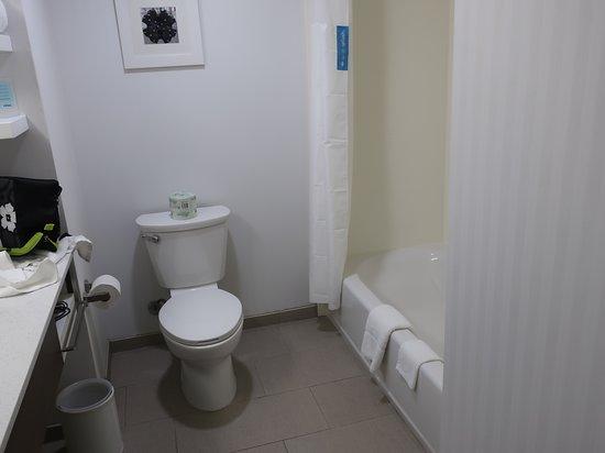 Hampton Inn & Suites Artesia: Bathroom was large