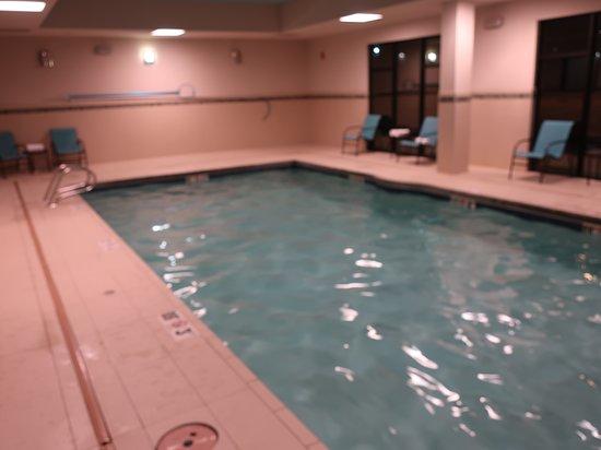 Hampton Inn & Suites Artesia: An inviting indoor pool area.