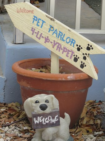 Hideout Restaurant: Dogs welcome on the porch - our kind of place!