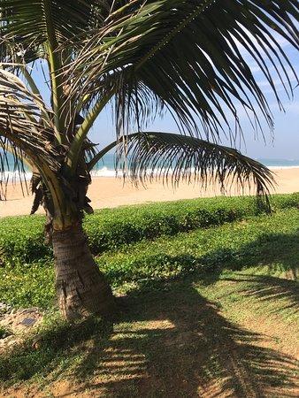 Неплохой отель с большим пляжем