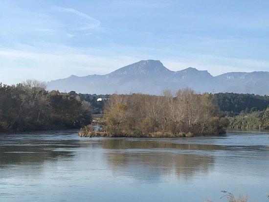 Xerta, إسبانيا: El rio Ebro a su paso por Xerta, con el Montcaro al fondo