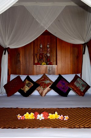 Stay a few step from Tangkoko Nature Reserve for Rp 588,000/2 nights. 3 space left at Tangkoko Sanctuary Villa