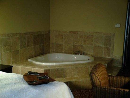 Vidalia, GA: Guest room