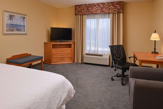 Сеффнер, Флорида: Guest room
