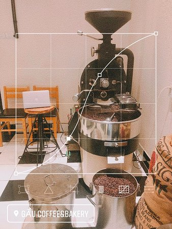 Coffee roaster at Gau roastery.
