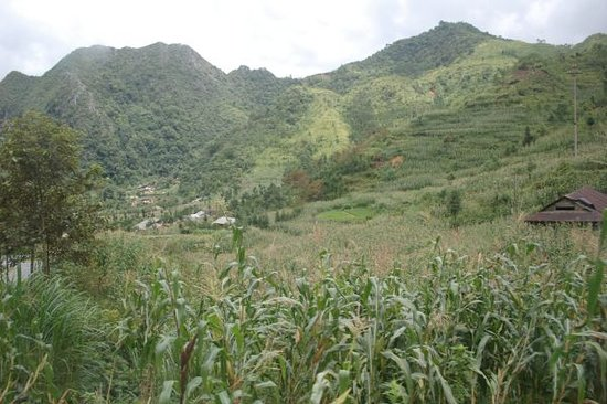 www.vietnamvoyagesplus.com