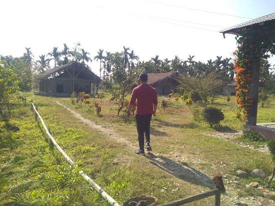 Balipara 사진