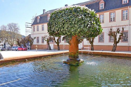 Bad Berleburg, Jerman: Brunnen im Schlosshof