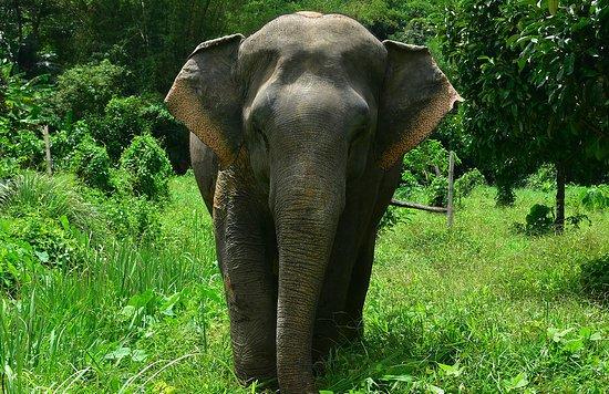 Tropical Escape Sri Lanka