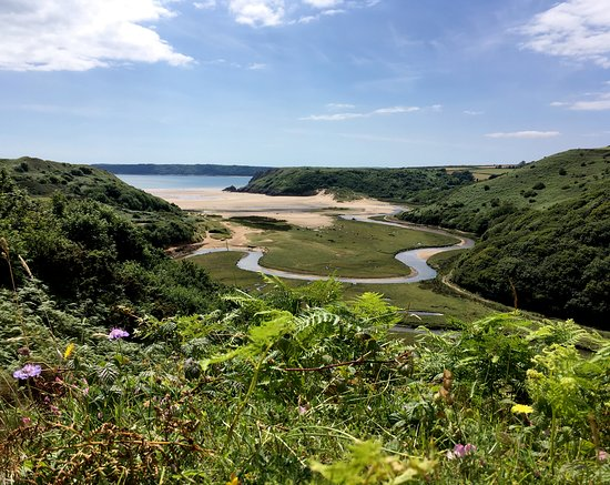 Gower Tours