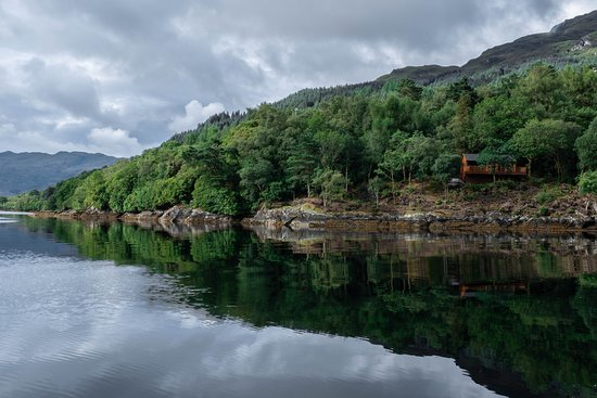 Lochgoilhead, UK: View of Lochwood House's secluded  log cabin, taken from a boat on the loch. The cabin is the perfect platform to view seals from the nearby seal colony, as well as both porpoise and dolphins in summer months.