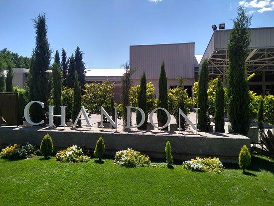 Bodega Chandon照片