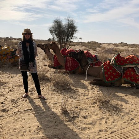 The Real Deal Rajasthan Camel Safari Photo